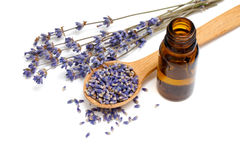 Dried lavender with a bottle of essential oil Royalty Free Stock Photo