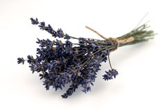 Dried Lavender Bouquet Isolated on White Background Royalty Free Stock Photo