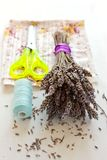 Dried lavender bouquet, scissors and cloth Royalty Free Stock Image