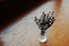 Dried lavender branches at vase at brown wooden background Stock Images