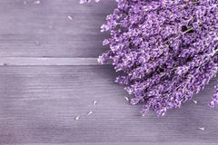 Dried lavender bunches on wooden background. Selective focus, co. Dried lavender bunches on wooden background. Copy space Royalty Free Stock Images