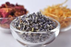 Dried lavender in a clear glass bowl Royalty Free Stock Image