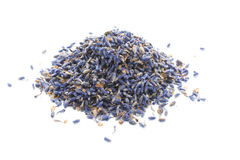 Dried Lavender Close Up Royalty Free Stock Photos