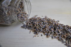 Dried lavender composition on white. Still life of a dried lavender flowers scattered from glass jar on a white wooden background Royalty Free Stock Photography