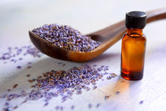 Dried lavender with essential oil. Dried lavender with a bottle of essential oil on a rustic table Stock Photography