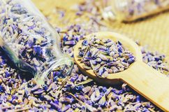 Dried lavender, essential oil. Royalty Free Stock Photos
