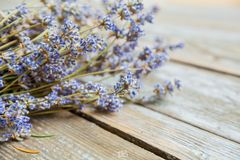 Dried Lavender Flower Aromatic Plant. Dried lavender flower over wooden rustic background on daylight, bunch of aromatic plant royalty free stock image