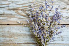 Dried Lavender Flower Aromatic Plant. Dried lavender flower over wooden rustic background on daylight, bunch of aromatic plant stock photo
