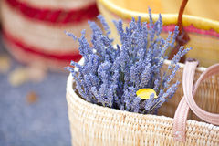 Dried lavender flowers. In basket at the fair Royalty Free Stock Images