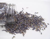 Dried Lavender Flowers Stock Photography