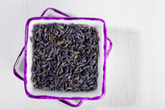 Dried Lavender flowers in square plates Royalty Free Stock Image
