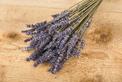 Dried lavender flowers Royalty Free Stock Photos