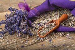 Dried lavender and fresh lavender flower stock image