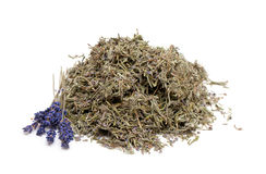 Dried lavender leafs Stock Photo