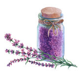 Dried lavender petals in a glass vial. Watercolor hand painting illustration on isolate white background Stock Images