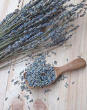 Dried lavender Royalty Free Stock Image
