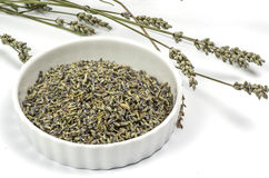 Dried lavender on white Royalty Free Stock Image
