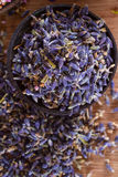 Dried lavender. The wonderful smell of dried lavender: for aromatherapy, decoration, wellness, spa Stock Images