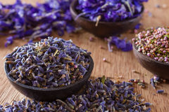 Dried lavender. The wonderful smell of dried lavender: for aromatherapy, decoration, wellness, spa Stock Photography