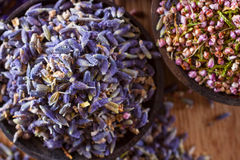 Dried lavender. The wonderful smell of dried lavender: for aromatherapy, decoration, wellness, spa Stock Image