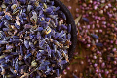 Dried lavender. The wonderful smell of dried lavender: for aromatherapy, decoration, wellness, spa. Heather hips in the background Royalty Free Stock Photos