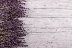 Dried lavender on wooden background. Stock Photography