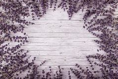 Dried lavender on wooden background. Royalty Free Stock Photo