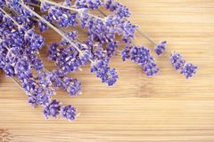 Dried lavender on a wooden desk Royalty Free Stock Images