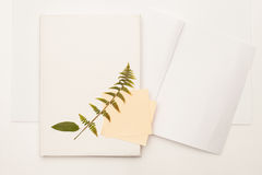 The dried leaf of wild cherry and fern on the book stock photo