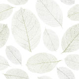Dried leafs seamless background. Dried leafs seamless background - seamless pattern for continuous replicate. See more seamless patterns in my portfolio Stock Photos