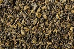 Dried leaves of green gunpowder tea, full frame. Stock Images