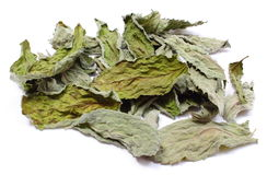 Dried leaves of mint on white background Stock Photos