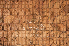 Dried leaves texture background. Royalty Free Stock Image