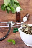 Dried lemon balm in mortar, stethoscope and medical capsules, choice between pills and alternative medicine Stock Photography