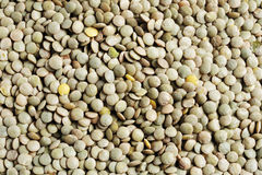 Dried lentils as background Stock Image