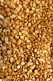Dried Lentils, Bulk retail, Natural Food Store. Dried Lentils, Beans, Bulk retail, Natural Food Store, routinely used for soups and in some ethnic recipes stock photos