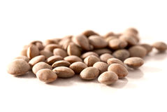 Dried lentils Royalty Free Stock Photos