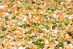 Dried lentils on sale at Market Royalty Free Stock Photo