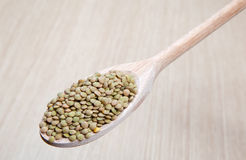 Dried lentils on a wooden spoon Royalty Free Stock Photos