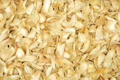 Dried lily bulbs, traditional chinese herbal medicine Royalty Free Stock Photos