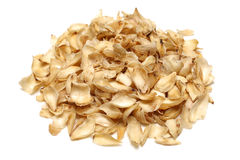 Dried lily bulbs Stock Photography