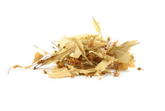 Dried linden flowers Stock Photo