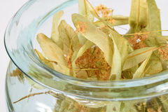 Dried Linden Flowers for Herbal Tea Stock Photos