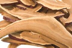 Dried Lingzhi Mushrooms Royalty Free Stock Image