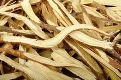 Dried liquorice roots Stock Photos