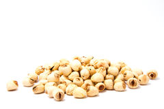 Dried Lotus Beans. On white background Stock Photography