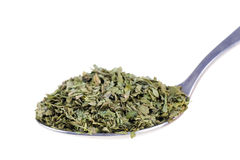 Dried lovage in a spoon Stock Photo