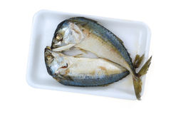 Dried mackerel Royalty Free Stock Image