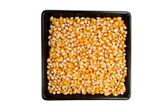 Dried mais corn on black plate Stock Photo