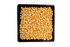Dried mais corn on black plate Stock Photo